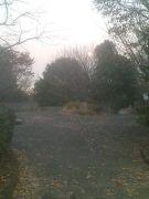 ☆秋葉台公園☆