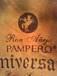 FC PAMPERO