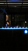 南青山 Bar bluestone
