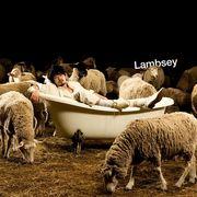 Lambsey(ラムジ)がお気に入り☆