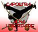 Capoeira ALMA LIBERDADE
