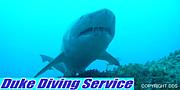 DDS(Duke Diving Service)