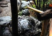 日本庭園と暮らす