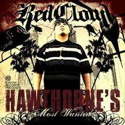 Hawthorne's