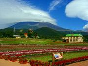 富士山の遊園地【ぐりんぱ】