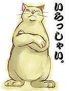 一条葛葉@cats