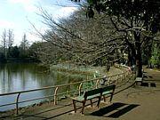 武蔵関公園を走る会