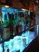 SHEEP  - Restaurant&Bar -