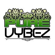 Pure Vybez ENT
