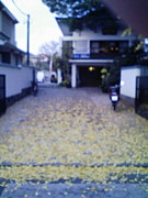 東京都目黒区五本木幼稚園