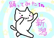 踊ってみた in 新潟