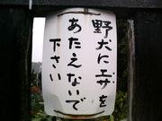 ★関東学生庭球同好会連盟役員★