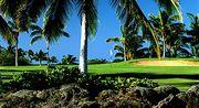 ●ゴルフへGO!!●
