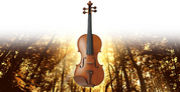 曲裏でかかるヴァイオリンが好き