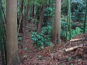 神奈川サバゲー私有地フィールド