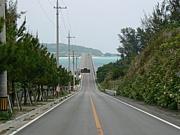 北海道〜がじゅまるの樹〜沖縄