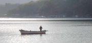 宇和海の釣り