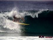 surf+snow bit's since1994