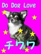 Do Dog Love チワワ