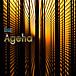 Bar ‐Agehaの会