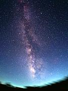 ☆PHEASANTS星の会☆