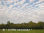 *OFFICE HIROSHIMA*