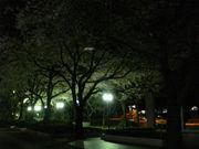 東京理科大学工業化学科