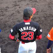YAMASHIN 23 (高知FD)