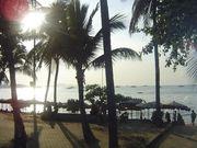 タイに帰りたい