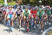 実業団サイクルロードレース