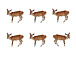 six deer -survival dAnce-