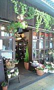 naturalcafe Armonico