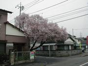 東京都立科学技術大学掃溜科