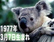 ☆1977年3月7日生まれ☆