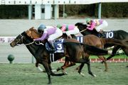 1999年 有馬記念