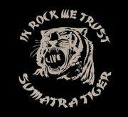 SUMATRA TIGER ���ޥȥ饿������