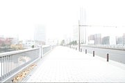 横浜近郊view