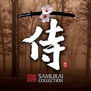 Samurais【侍s】神奈川支部。