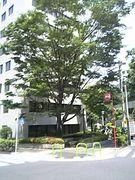 赤坂4丁目*憩の広場*