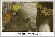 ●titti●  (ティッティ)