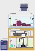 水槽や水槽設備、飼育道具がすき