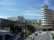 帝塚山大学 2013新入生。
