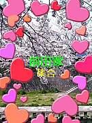 ☆☆前田家ファミリィ☆☆