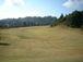 ゴルファイト