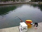 広島 紀州釣り