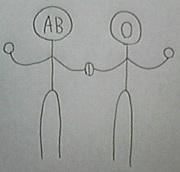AB型とO型は仲が悪い!?