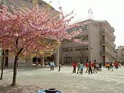 足立区立千寿桜小学校