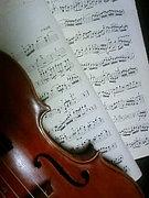バイオリンの先生・生徒募集