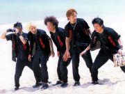 1985年3月28日!カモーン☆