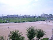 阿武野高校野球部